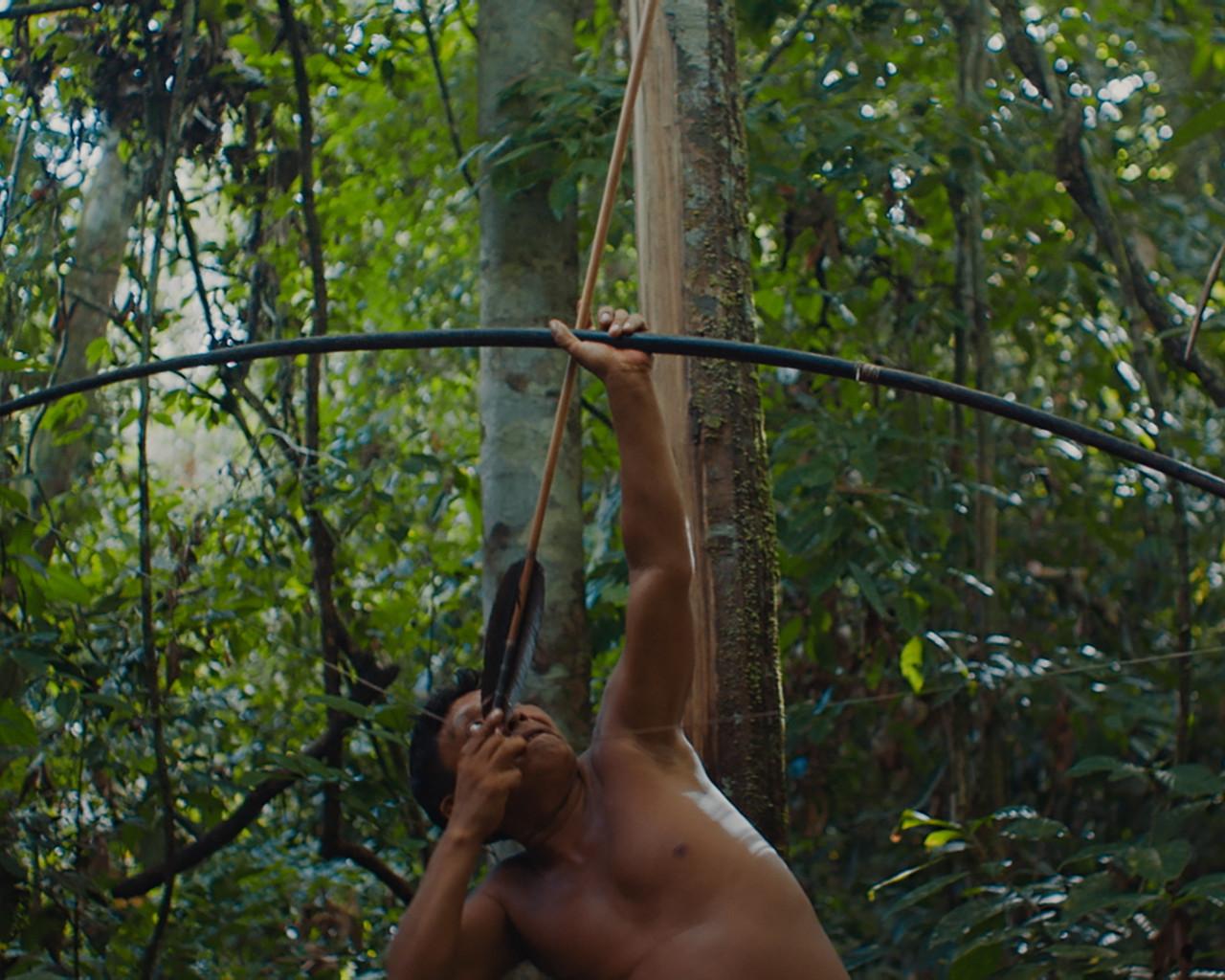 A Última Floresta, de Luiz Bolognesi/Still: Pedro J Marquez